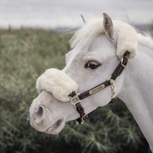 Kentucky Lädergrimma Ponny inkl fårskinn