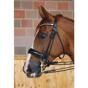 Dyon Rundsytt Kandar Bred Lackad Pullback - Dressage Collection