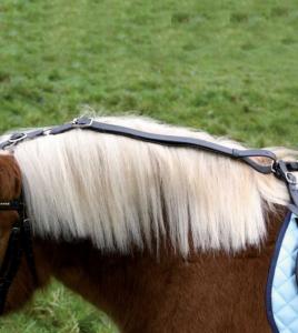 Uppkäk ponny