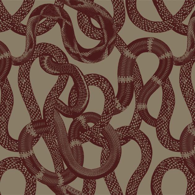 Metervara Snake peek