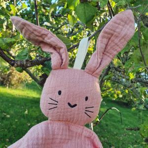Cuddly rabbit rose