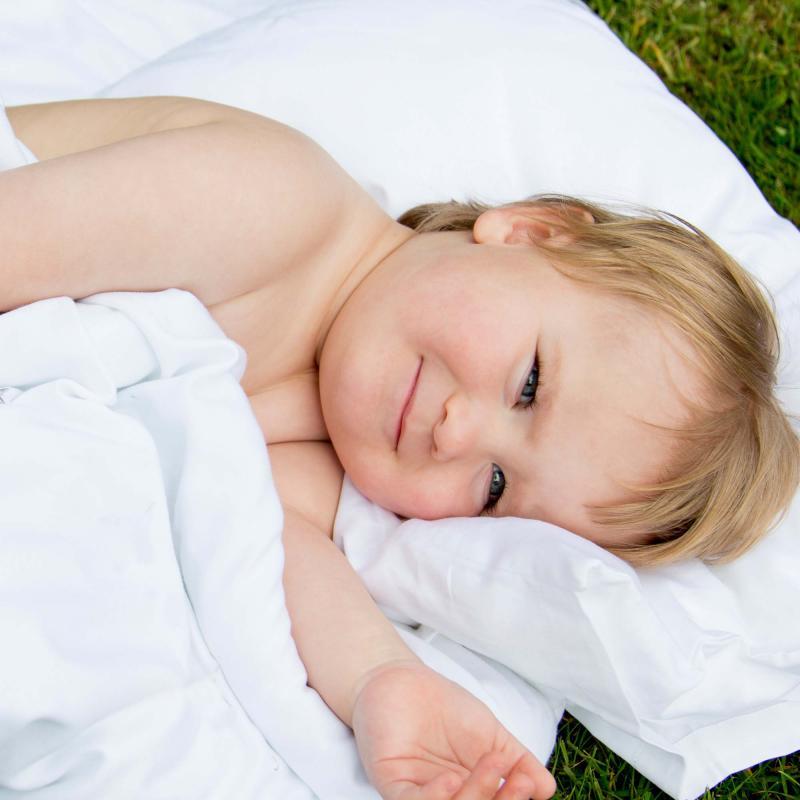 Flat sheet junior