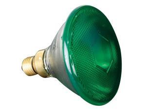 Halogenlampa 80W / 240V. Grön
