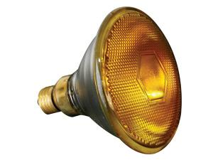 Halogenlampa 80W / 240V. Gul