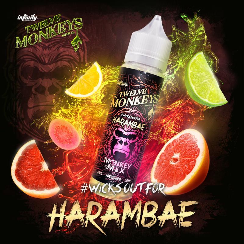 12 Monkeys - Harambae