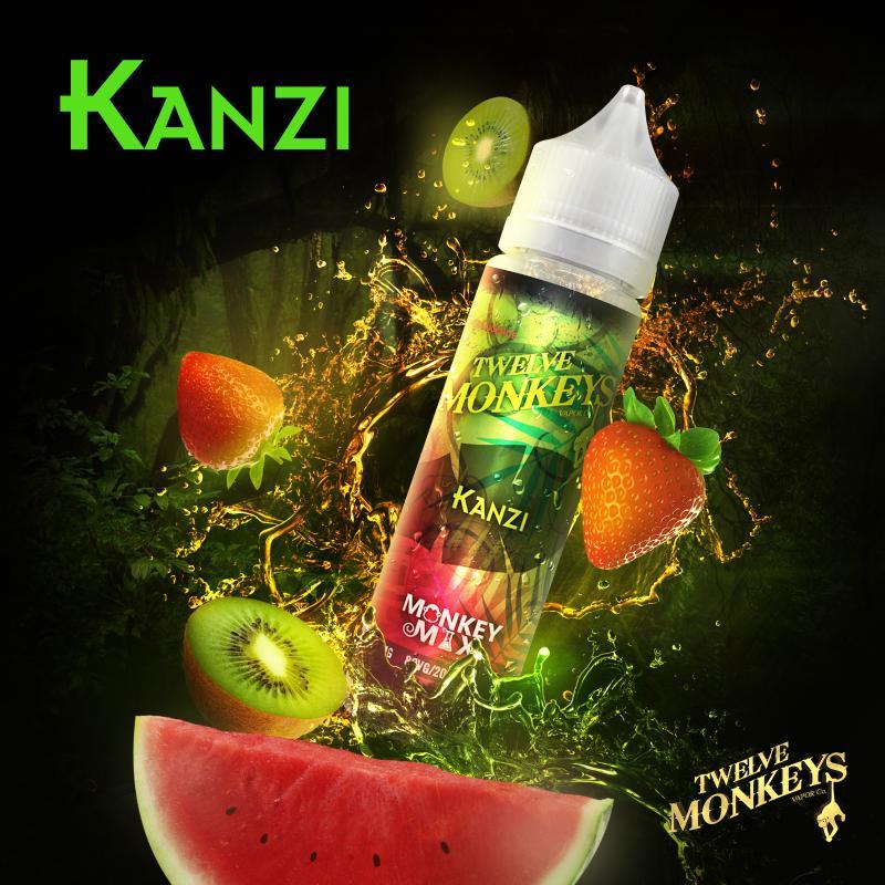 12 Monkeys - Kanzi
