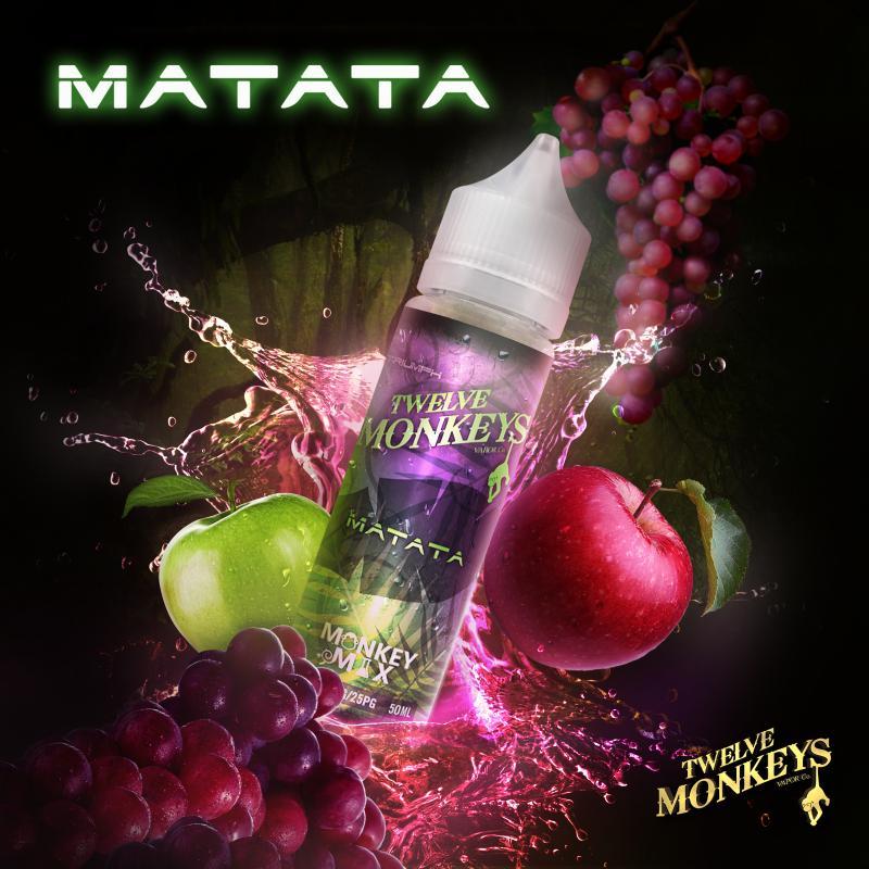 12 Monkeys - Matata