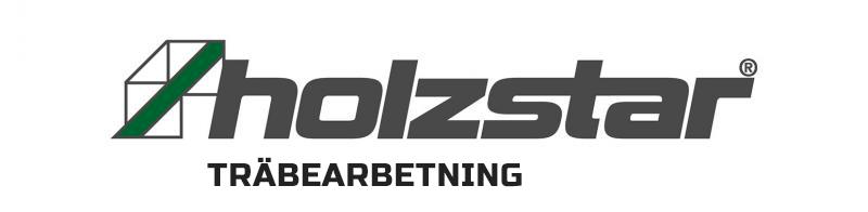 holzstar logo