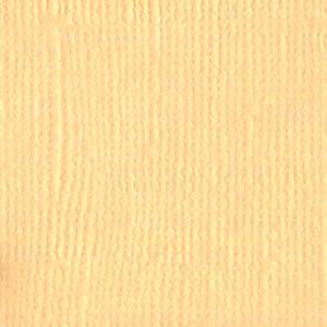 B - Canvas  Vanilla