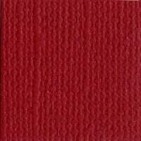 B - Canvas  Pomegranate