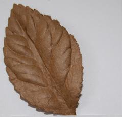 Blad l.brun 50 mm