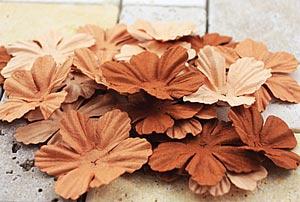 P - E-Line blommor brun