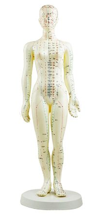 Akupunkturmodell Kvinna