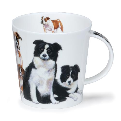 Cairngorm Dogs and Puppies Collie