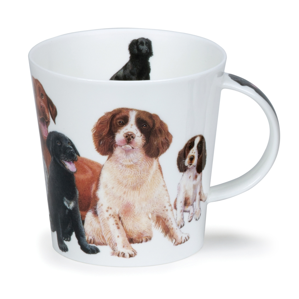 Cairngorm Dogs And Puppies Spaniel