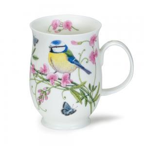 Suffolk Hedgerow Birds Blue Tit