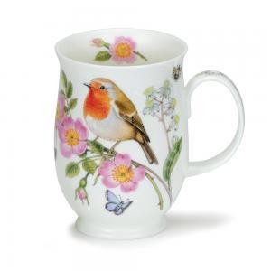 Suffolk Hedgerow Birds Robin