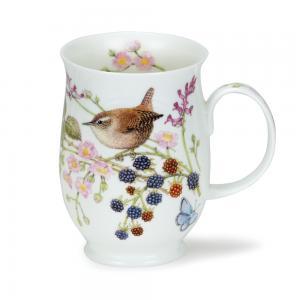 Suffolk Hedgerow Birds Wren