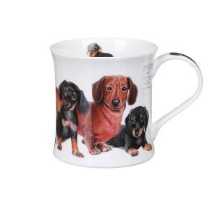 mugg Dunoon designer dogs