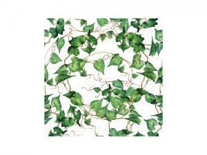 Servett Murgröna