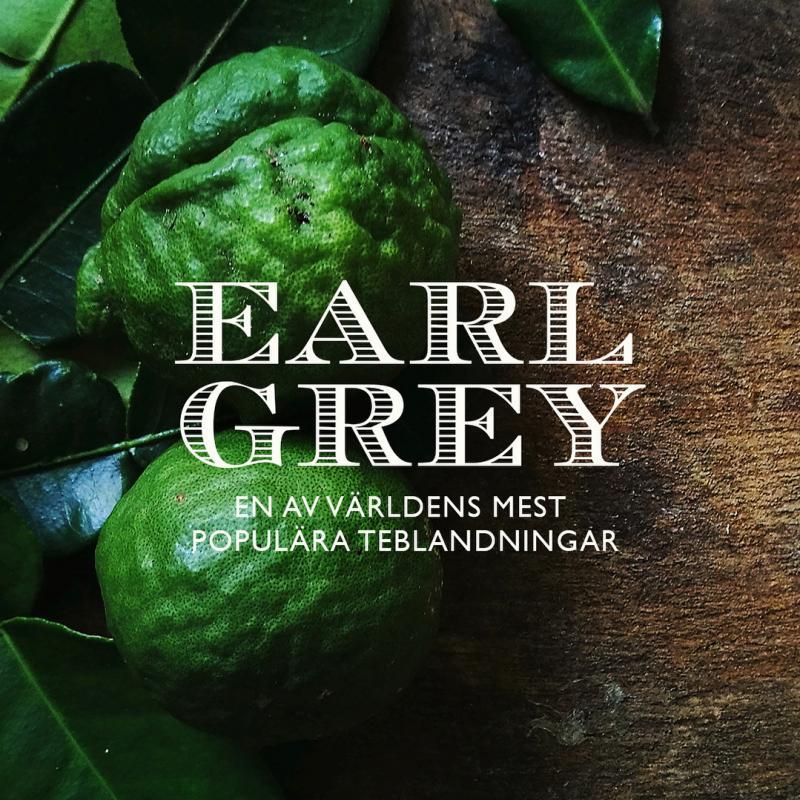 Earl Grey - Världens vanligaste smaksatta te