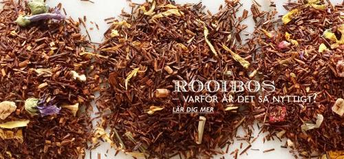Rooibos - Varför är det så nyttigt?