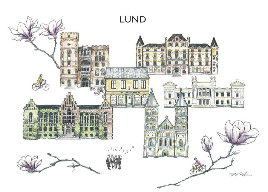 Tevykort Lundablandning