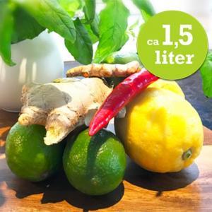 1.5L Hälsoshot Gurkmeja, Honung, Ingefära, Chili
