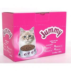 Kattfoder 12x100g/6fp Jummy