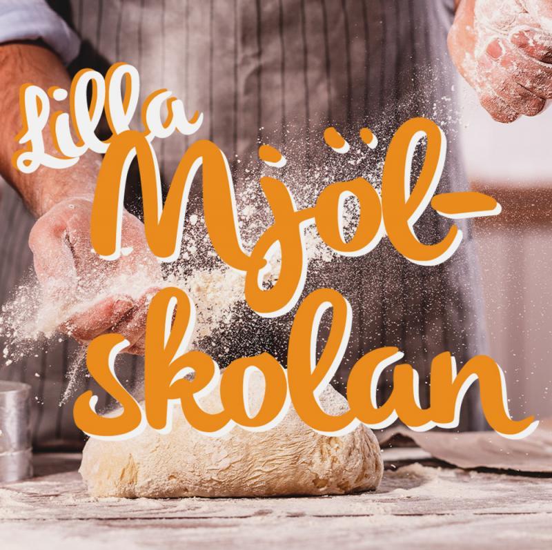 Gratis nedladdning av Kolonialvarors Lilla Mjölskola PDF