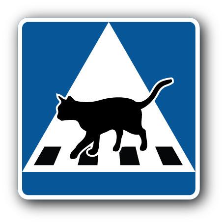 Katt: Övergångsställe