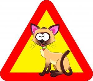 Varningsskylt Katt stora ögon beige