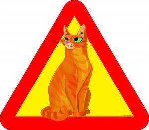 Varningsskylt Katt med gröna ögon