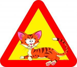 Varningsskylt Katt liggande stora ögon