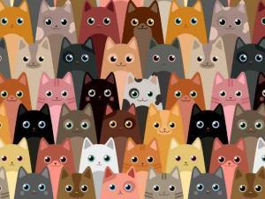 Trikå katter på hög