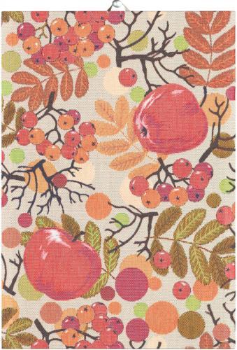 Handduk Äppelbär