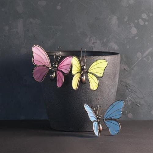Fjäril med glasvingar