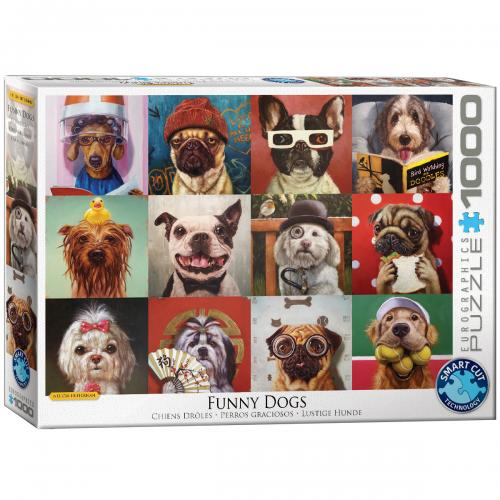 Funny Dogs by Lucia Heffernan