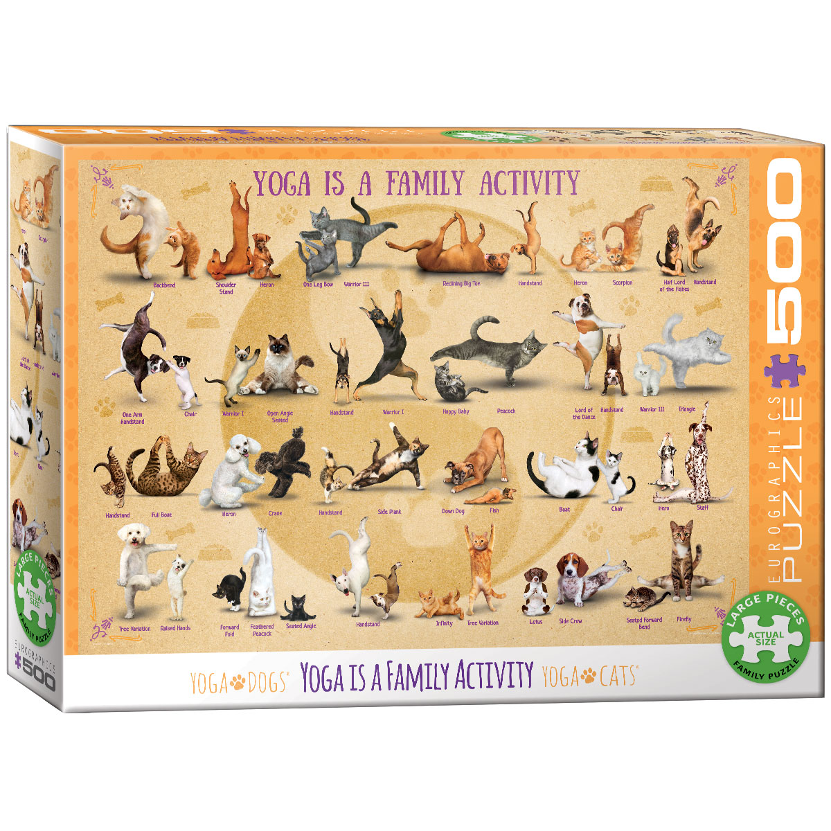 Yoga is a Family Activity