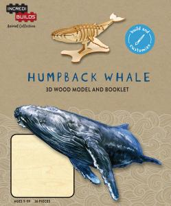 Animal Collection: Humpback Whale