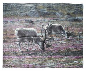 Pläd Sajve i mjuk fleece med renar