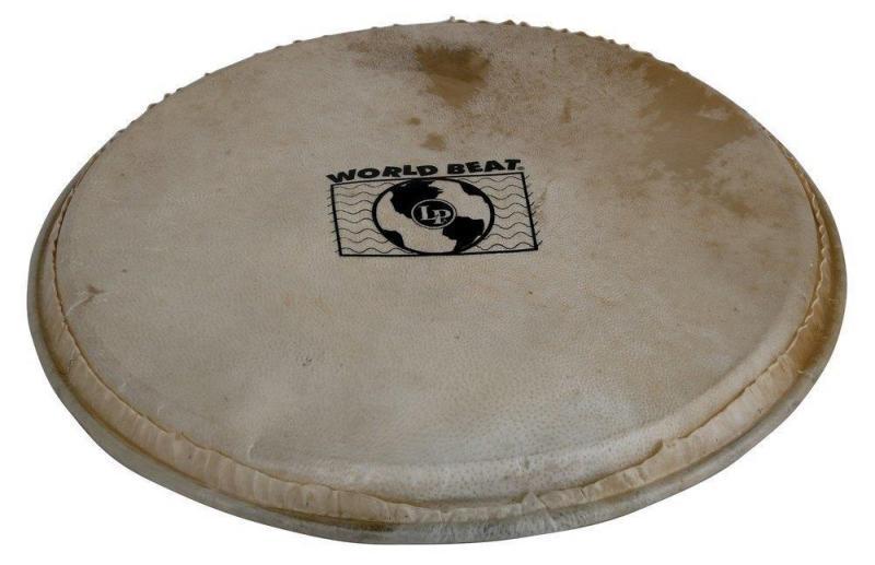 Latin Percussion Percussion head Plenera 10'', WB505B