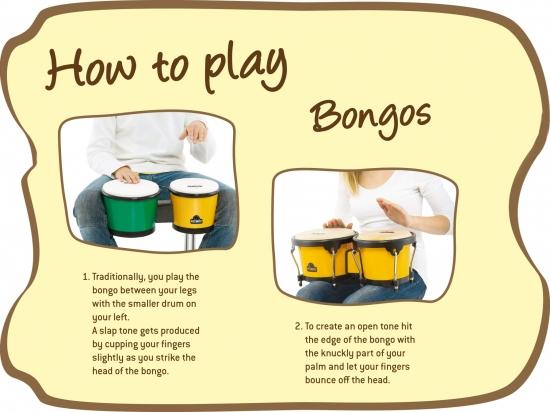 ABS Bongo