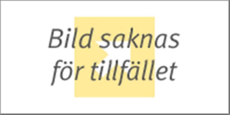 TITEL SAKNAS