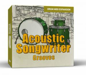 Acoustic Songwriter Grooves