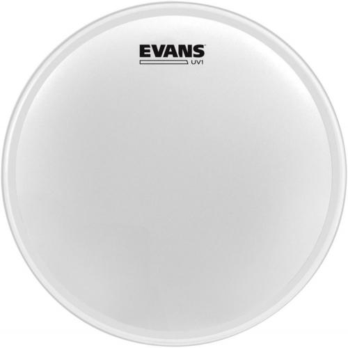 14'' Coated UV1, Evans