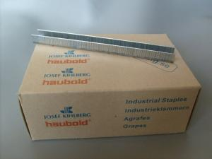 Klammer Rostfria 10 000-pack 10 mm