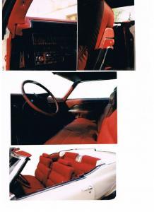 Vinyl 1969 Convertible klädsel