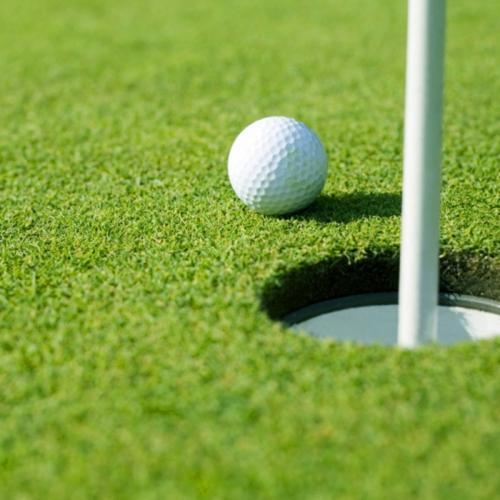 Golfplan Fröblandning 100 Svingel, 20 kg