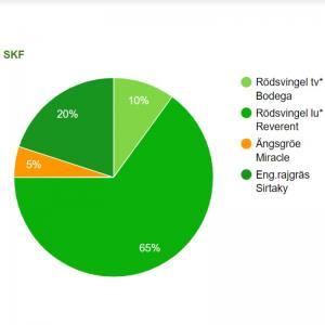 Gräsfrö SKF renovering 20 kg